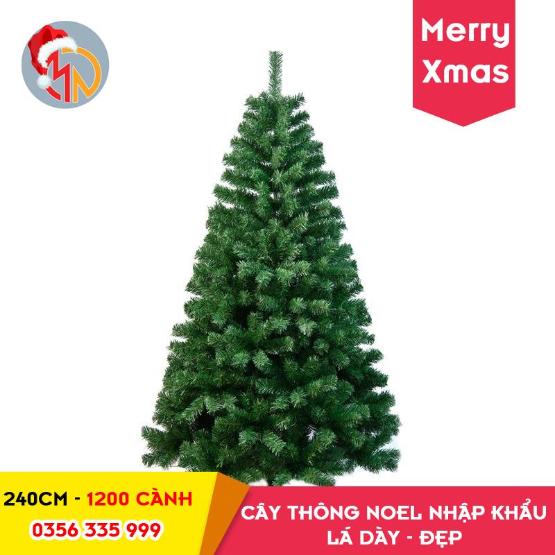 Cây Thông Noel 240cm Lá Dày Đẹp