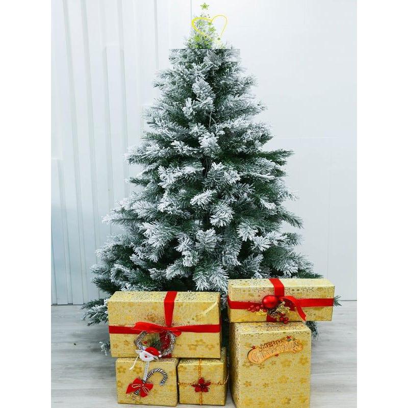 Cây Thông Noel Phủ Tuyết 1m2